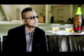 "Video: Sean Paul ""She Don't Mind"""