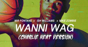 Wanni Wag (CHV) Artwork (1)
