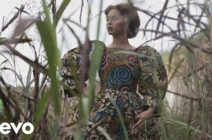 Music Video: Beyonce- All Night